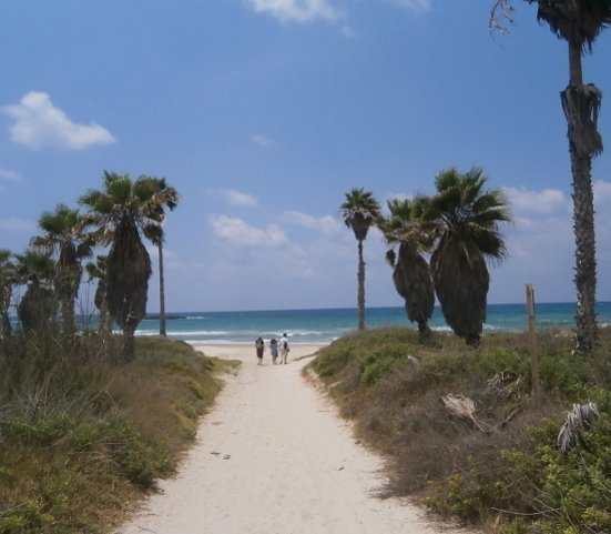 Kibbutz experience Tour - Abraham Hostels