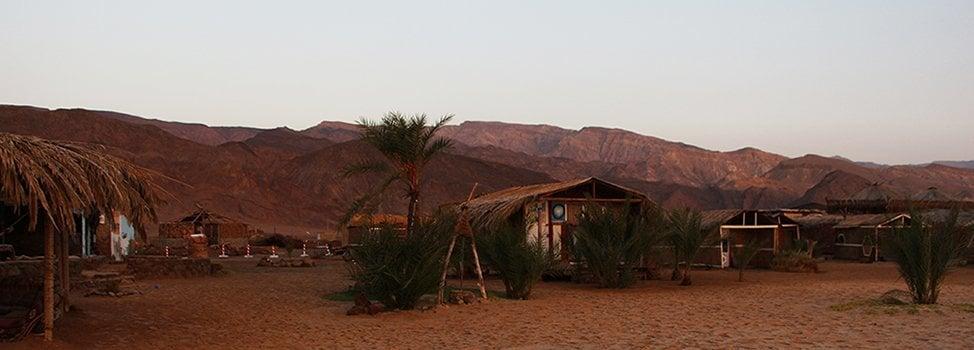 Yoga retreat in Sinai with Abraham Tours
