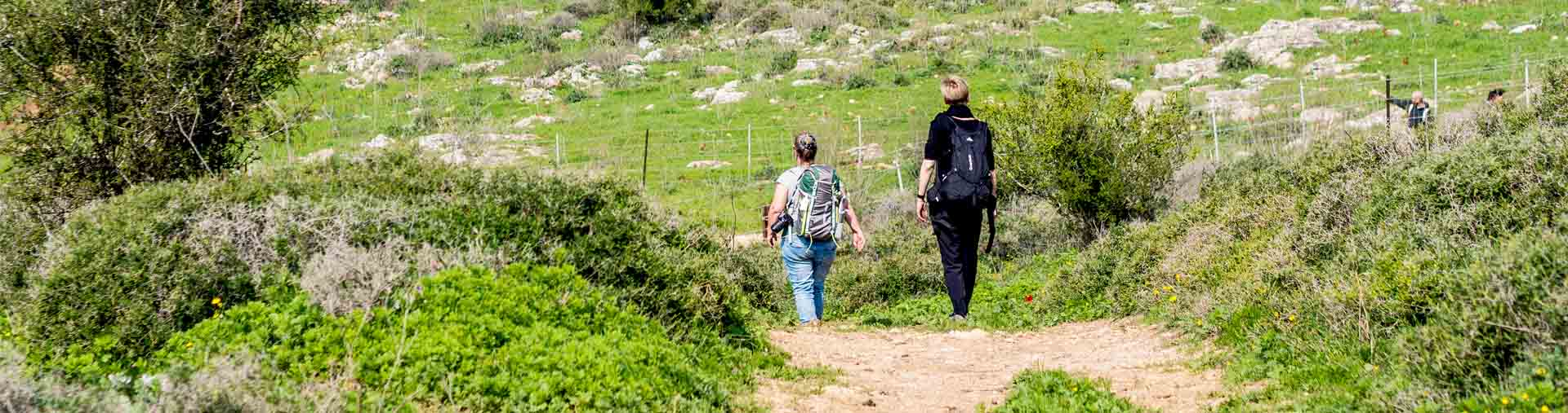 Jesus Trail Hiking Package from Tel Aviv
